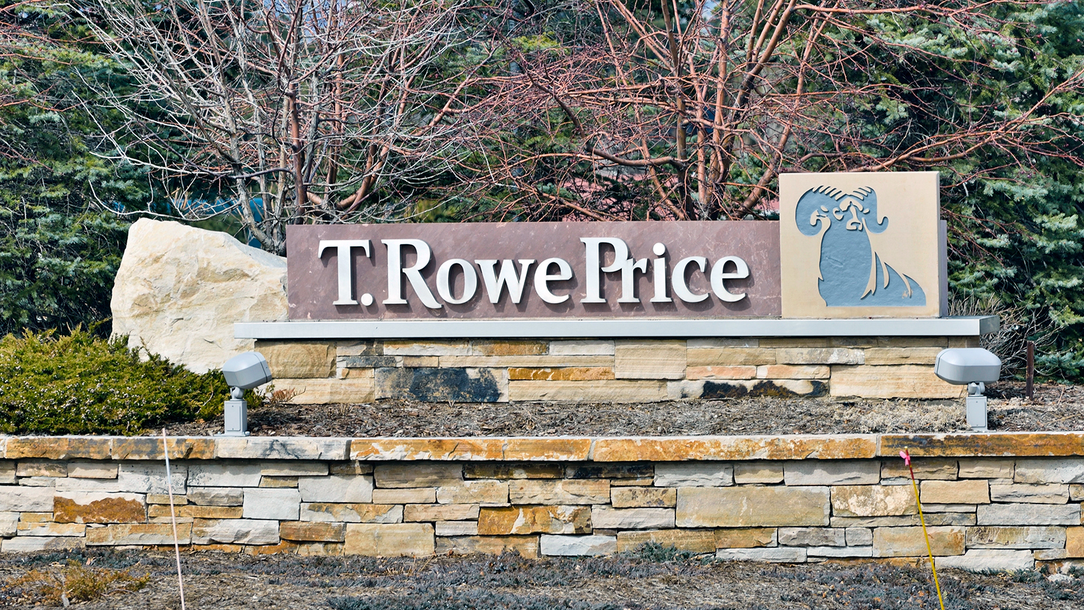 T  Rowe Price closes emerging markets strategy to new investors