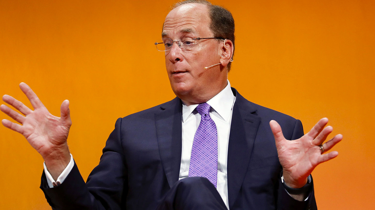 Fink lays out BlackRock's focus on sustainability