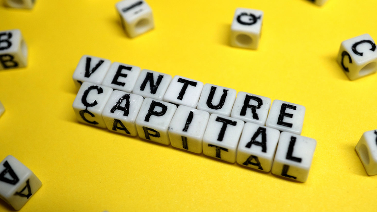 Venture capital investments down, hewing to 2019 trend